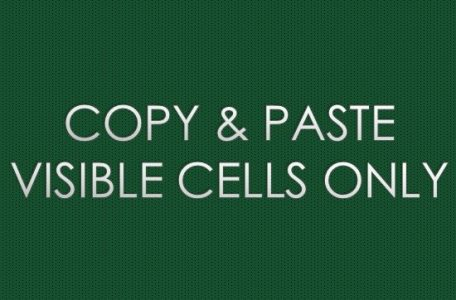 COPY & PASTE VISIBLE CELLS ONLY