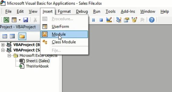Insert Module in VBA Editor